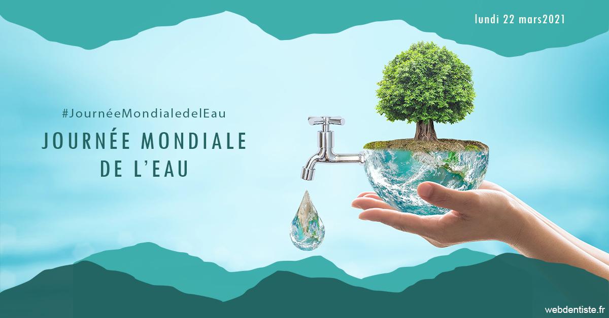 https://dr-perotti-laurent.chirurgiens-dentistes.fr/Journée de l'eau 1